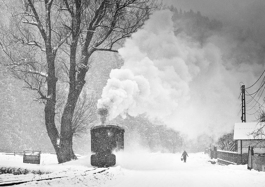 Bw Photograph - A Winters Tale by Sorin Onisor