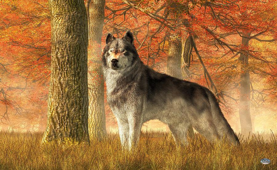 A Wolf In Autumn Digital Art By Daniel Eskridge