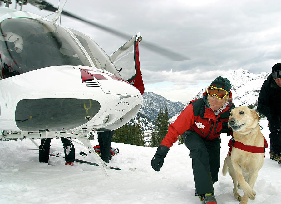Art print POSTER Canvas Helicopter Looking for Avalanches