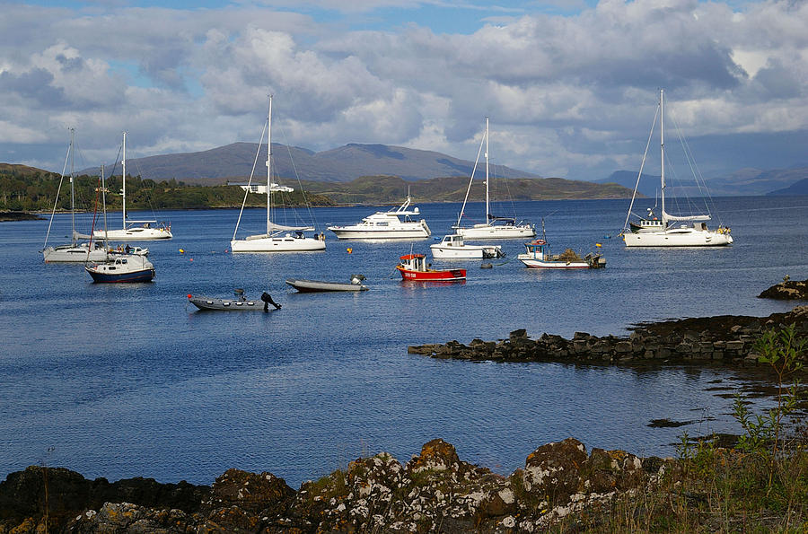 Yachts Photograph - A Yachting Haven by Veron Miller