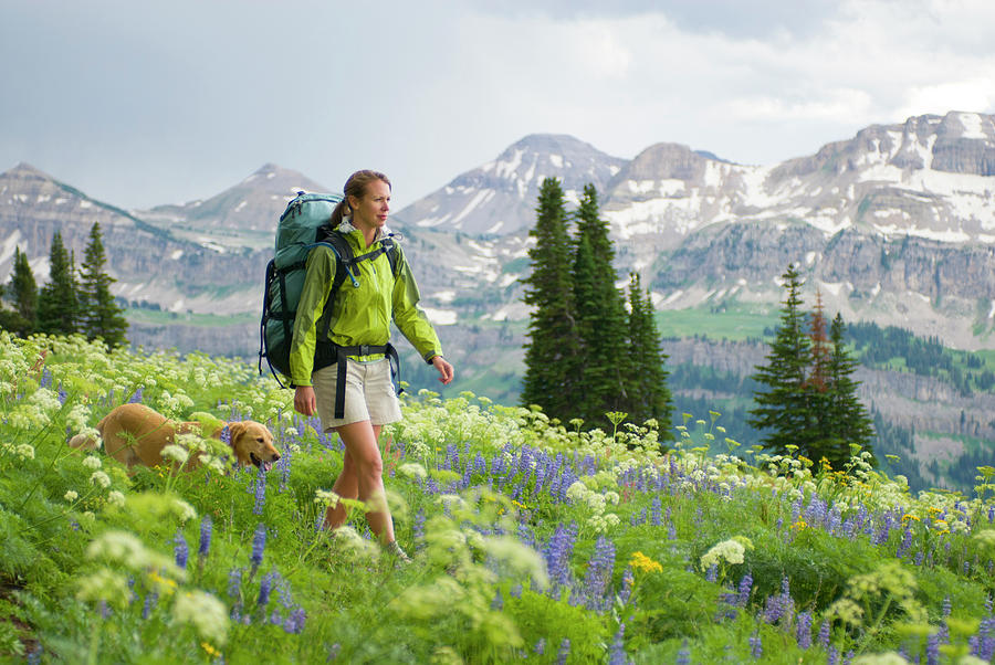 Adventure Photograph - A Young Woman And Her Dog Hike by Jeff Diener