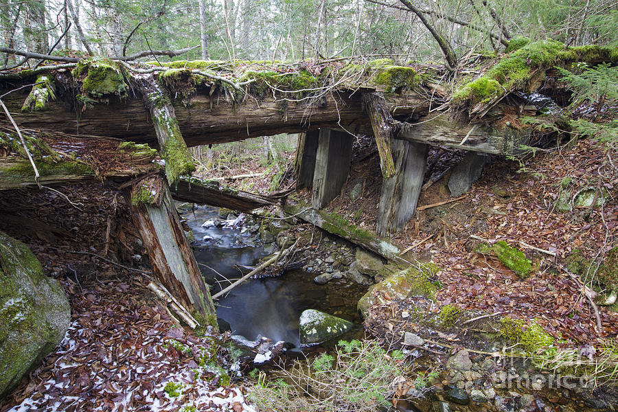 19th Century Railroad Photograph - Abandoned Boston And Maine Railroad Timber Bridge - New Hampshire Usa by Erin Paul Donovan