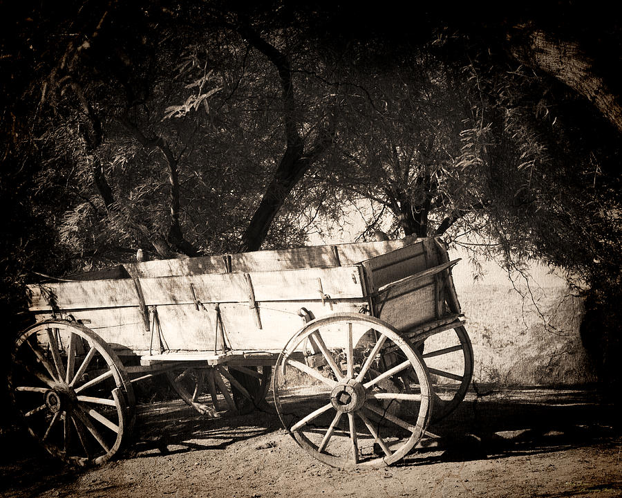Wagon Photograph - Abandoned by Dale Simmons