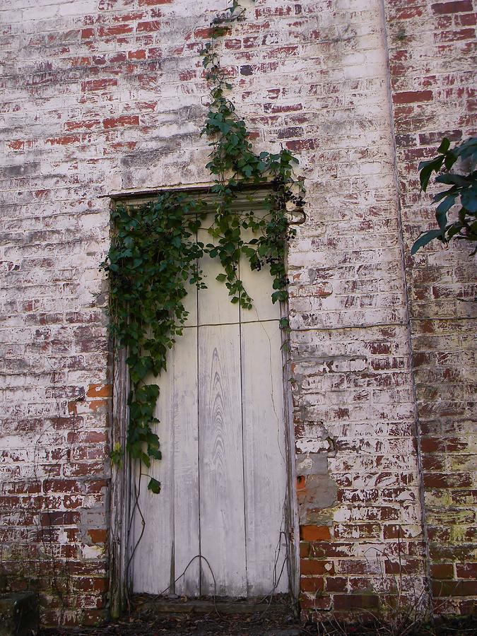 Brick Wall Photograph - Abandoned Door by Warren Thompson