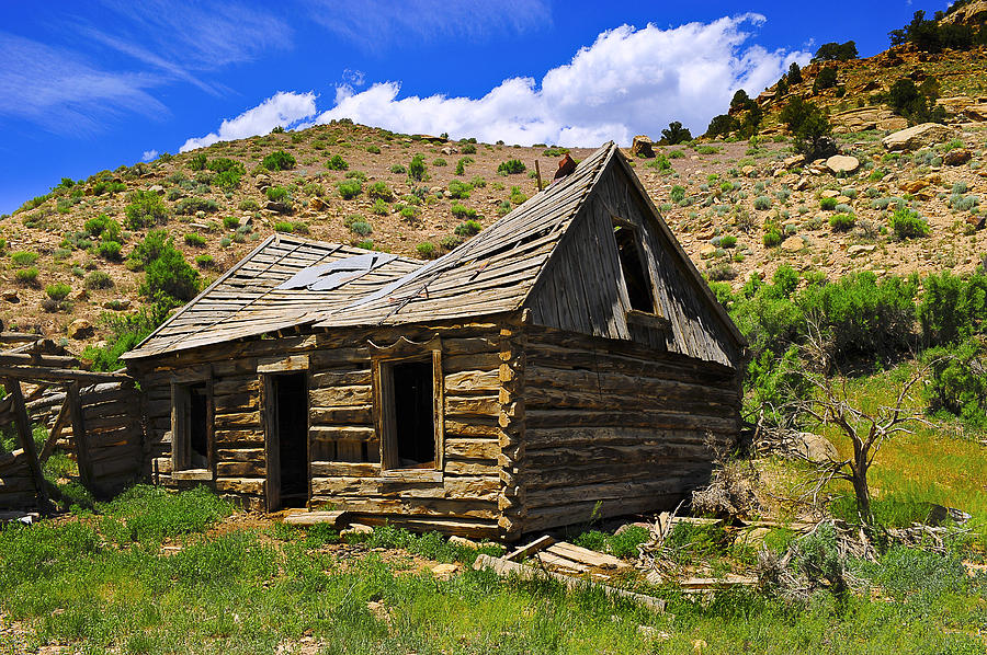 House Photograph - Abandoned Log Cabin by Don and Bonnie Fink