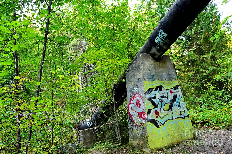 Derelict Photograph - Abandoned Pipeline II by Phil Dionne