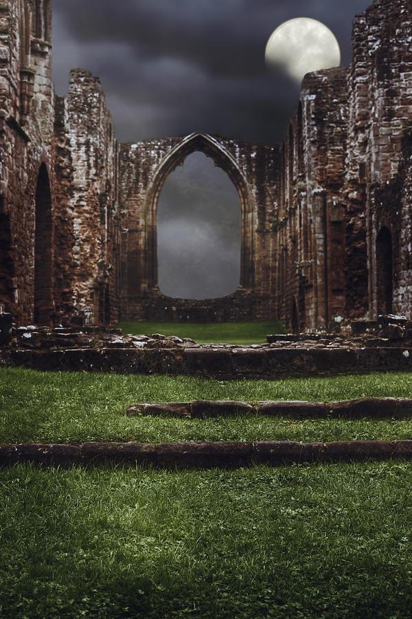 Abbey Photograph - Abbey Steps by Amanda Elwell