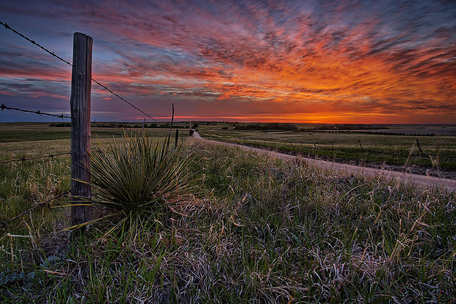 Kansas Photograph - Ablaze by Thomas Zimmerman