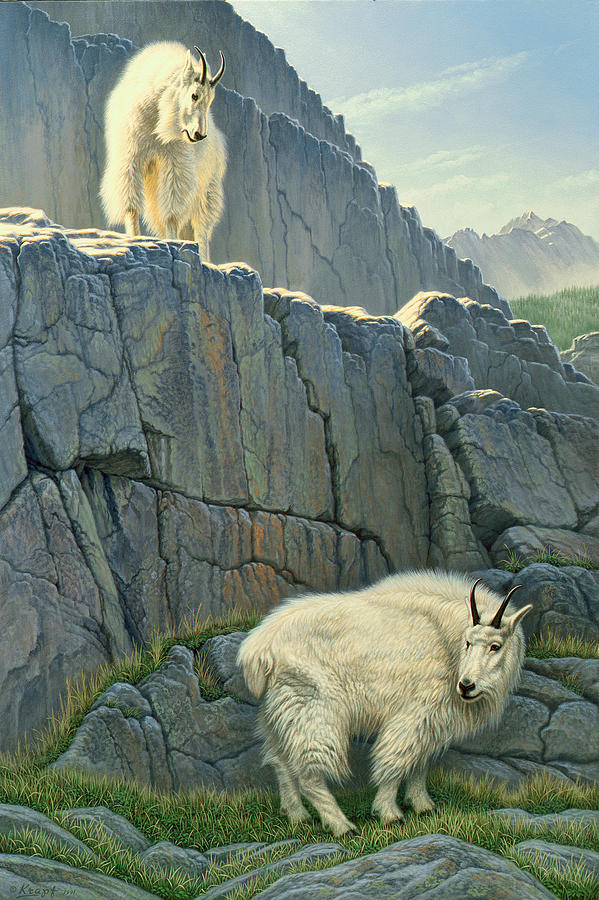 Wildlife Painting - Above And Beyond by Paul Krapf