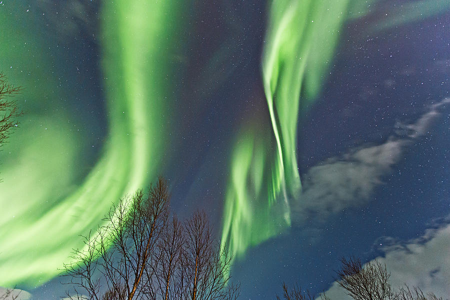 Norway Photograph - Above The Trees by Frank Olsen
