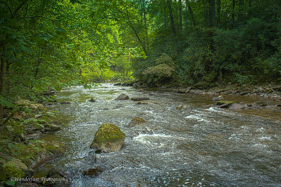 Gsmnp Photograph - Abrams Creek Gsmnp by Paul Herrmann