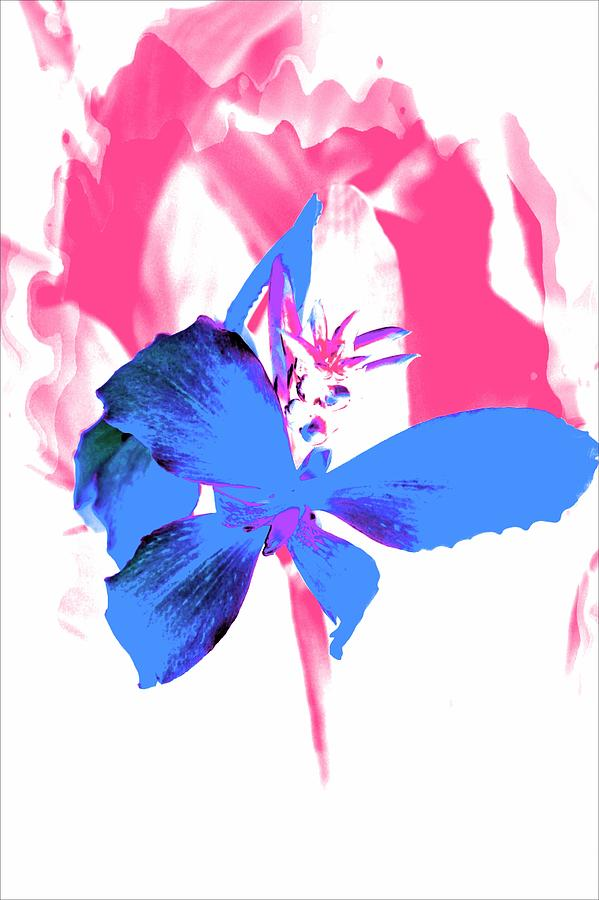 Blue Flowers Photograph - Abstract Blue by Cathie Tyler