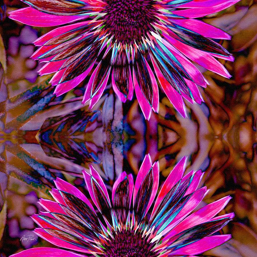Abstract Flowers Flower Power Three Photograph By Ann Powell