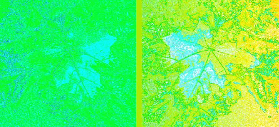 Abstract Fusion 249 Digital Art