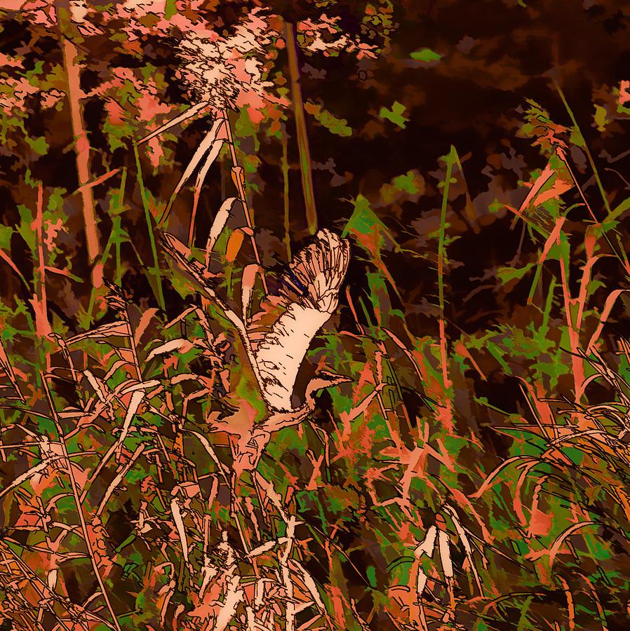 Abstract Photograph - Abstract Heron   Leif Sohlman by Leif Sohlman