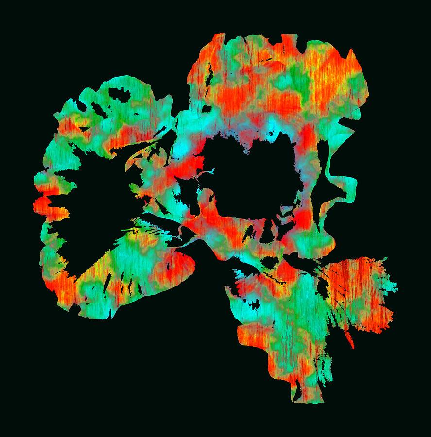 Iris Photograph - Abstract Iris by James Hammen
