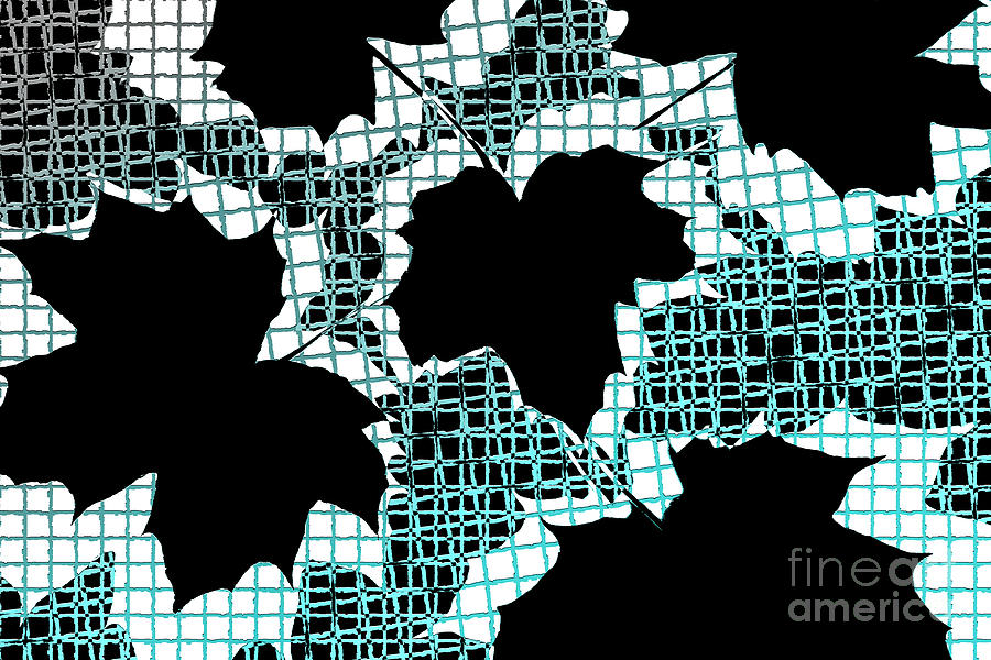 Abstract Photograph - Abstract Leaf Pattern - Black White Turquoise by Natalie Kinnear