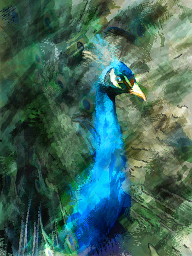 Abstract Marker Sketch Of Peacock Painting by Elaine Plesser