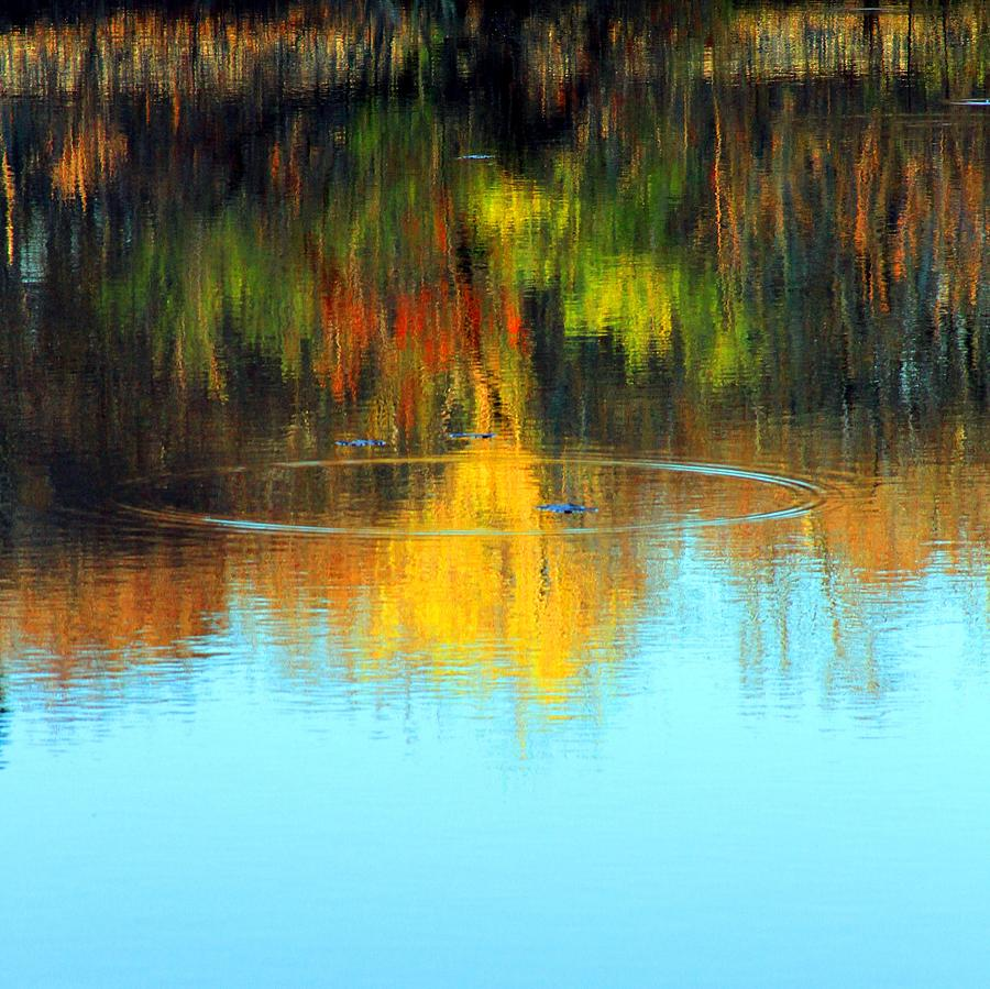 Cape Cod Photograph - Abstract Nature by MPG Artworks