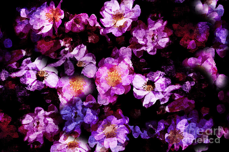 Abstract Digital Art - Abstract Painterly Pink And Purple Wild Roses by Beverly Claire Kaiya