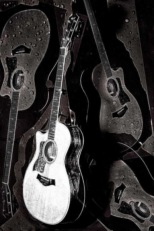 Guitars Digital Art - Abstract Taylor Guitars by Susan Stone