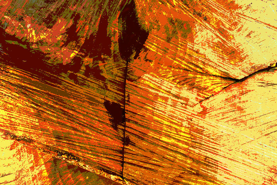 Abstract Photograph - Abstract Wood Grain by John Lautermilch