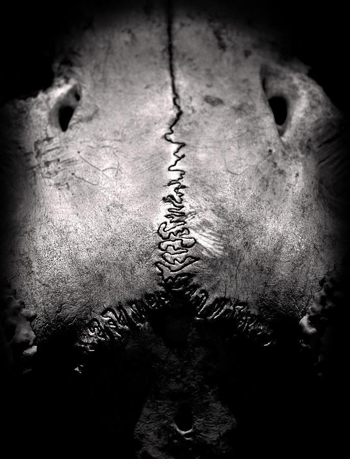 Matt Blum Photograph - Abyss by Matthew Blum