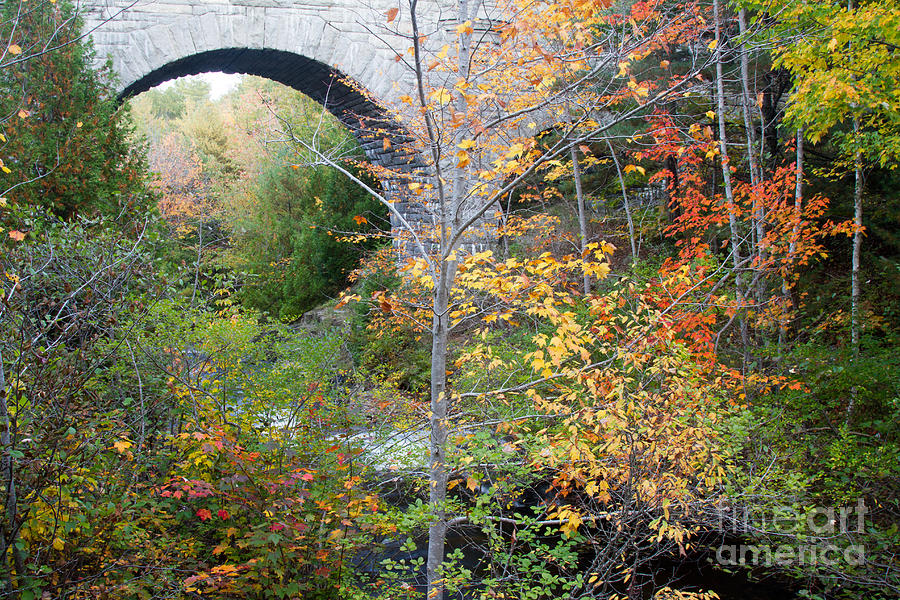 Maine Photograph - Acadia Carriage Bridge by Chris Scroggins
