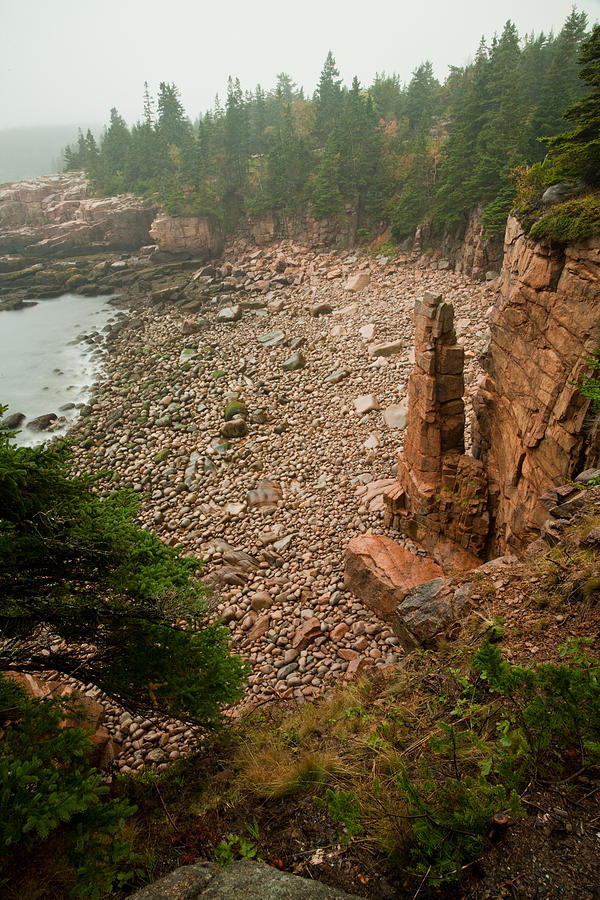 Monument Cove Photograph - Acadia Fog At Monument Cove 4337 by Brent L Ander