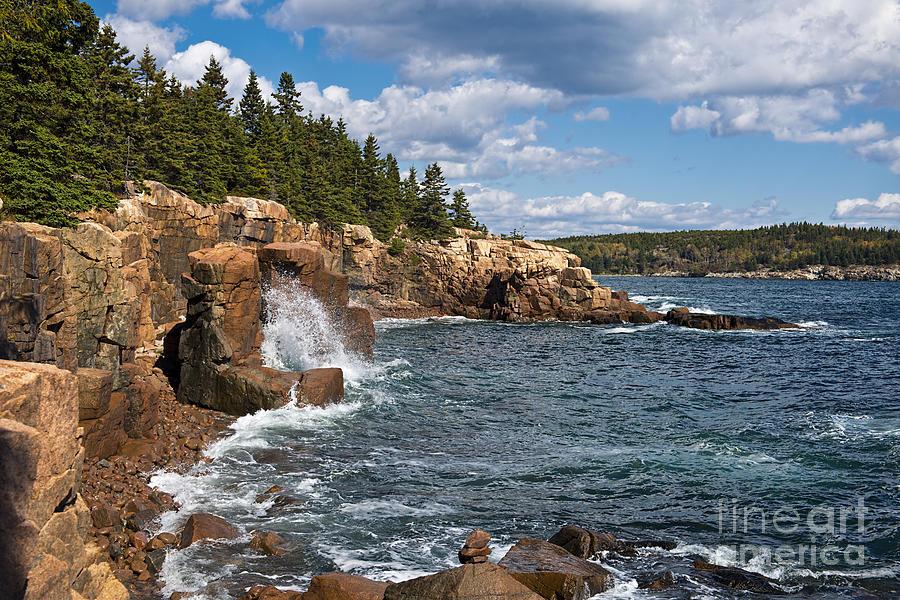 Acadia National Park Shoreline Photograph