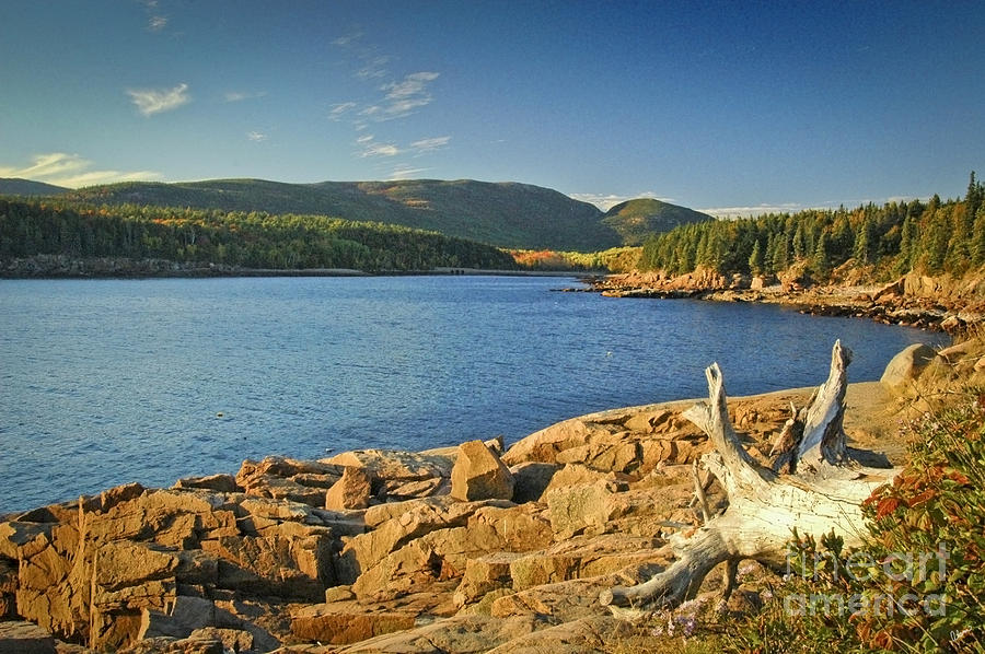 Acadia National Park Photograph - Acadia Otter Cove by Alana Ranney