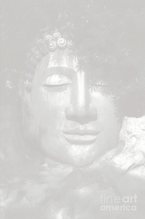 Dhyani Buddha Photograph - Access To Insight  by Vineesh Edakkara