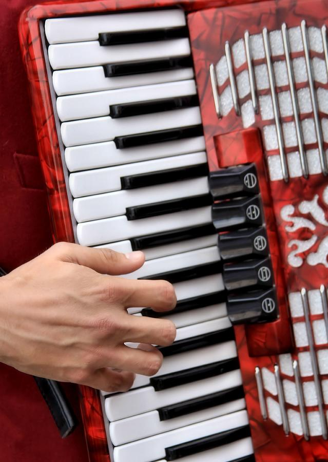 Music Photograph - Accordian by James Stough