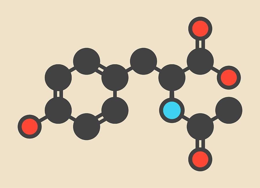 Acetyl Photograph - Acetylated Molecule by Molekuul
