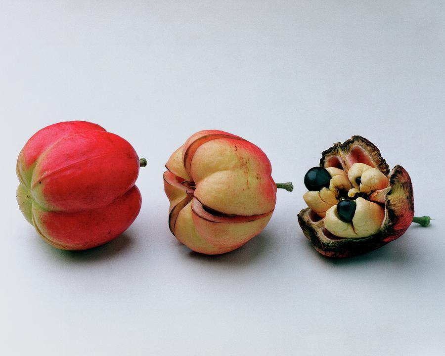 Ackee Fruit Development Photograph by Romulo Yanes
