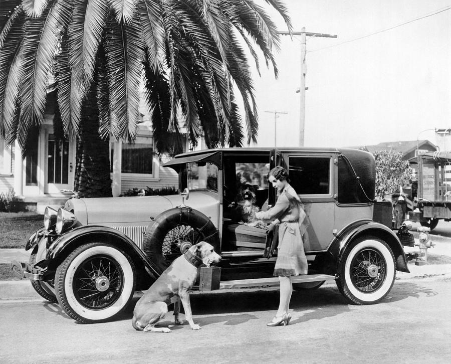 1920's Photograph - Actress And Dogs Go On Trip by Underwood Archives