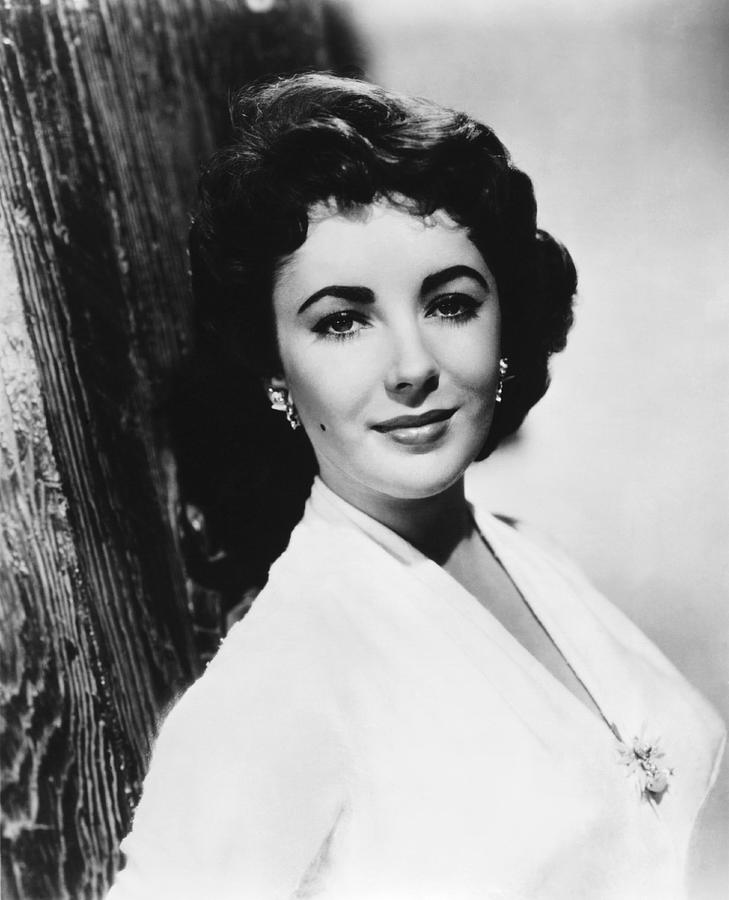 1950's Photograph - Actress Elizabeth Taylor by Underwood Archives