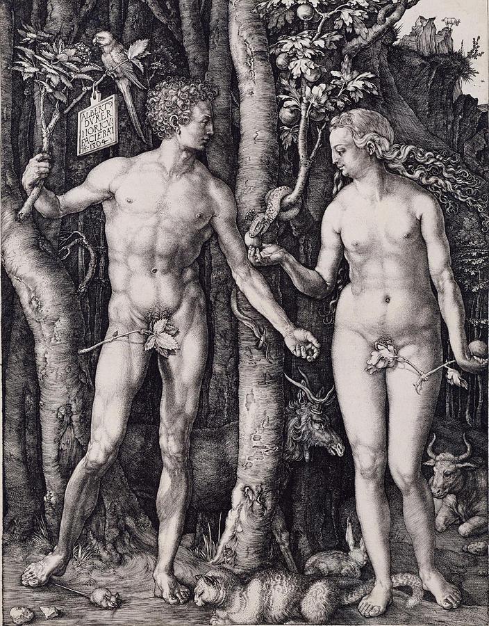 Albrecht Durer Drawing - Adam And Eve Engraving by Albrecht Durer