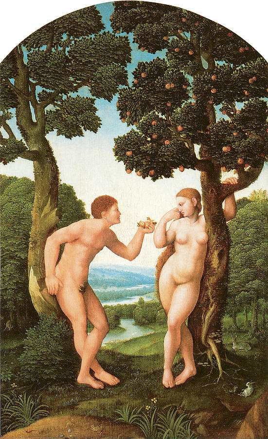Adam And Eve Painting - Adam And Eve by Jan Van Scorel