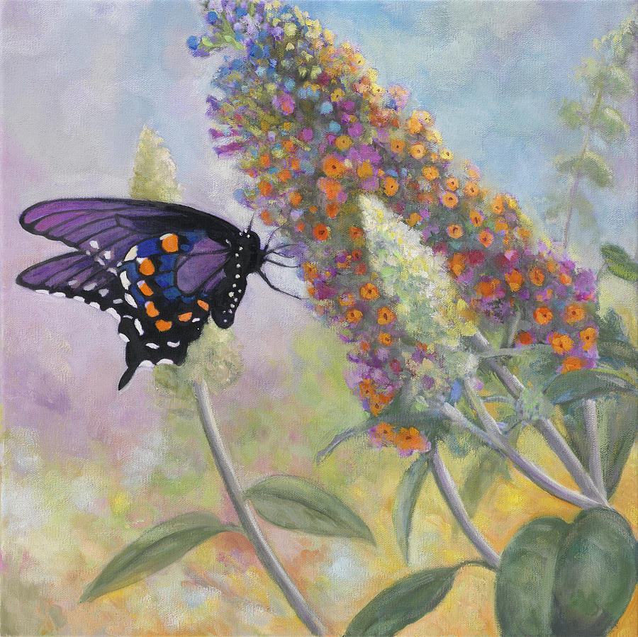 Admiral Painting - Admiral Butterfly by John Zaccheo