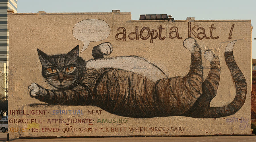 Mural Painting - Adopt A Kat Or Me Now by Blue Sky