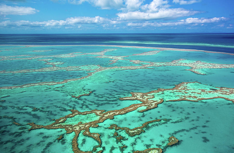 Aerial Of Great Barrier Reef At Photograph by Daniel Osterkamp