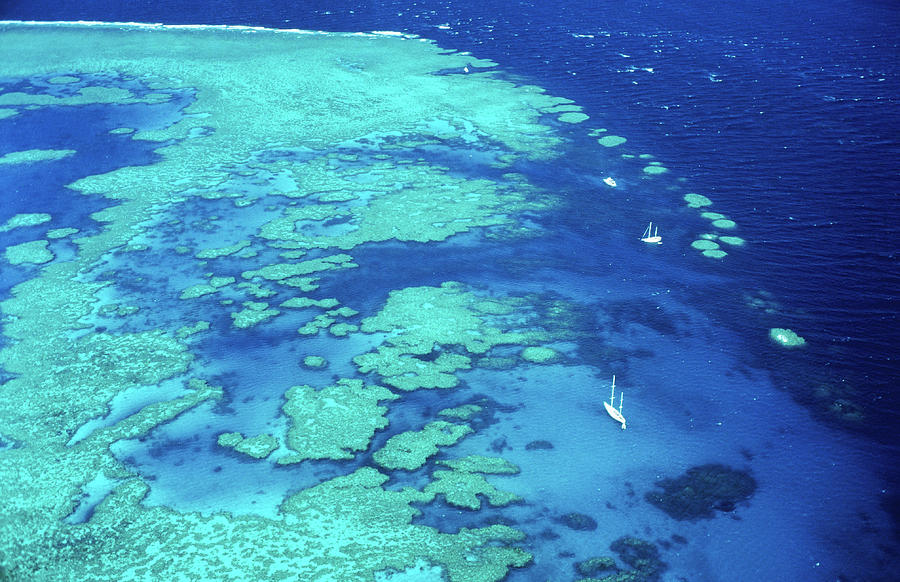Aerial Of Sailboats At Hardy Reef, Near Photograph by Holger Leue