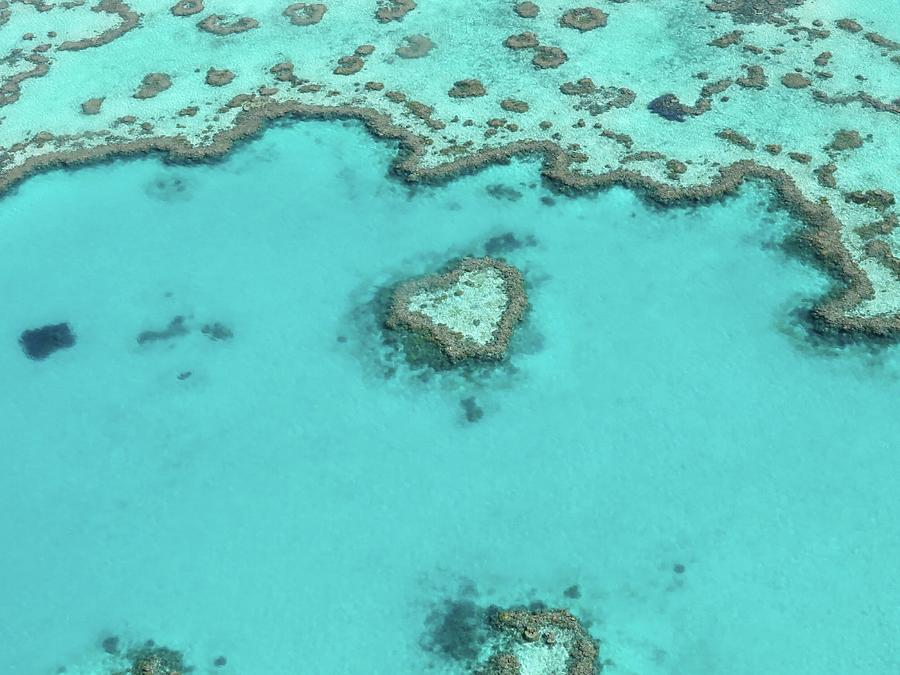 Aerial View Of Great Barrier Reef Photograph by Neil Baldwin / Eyeem