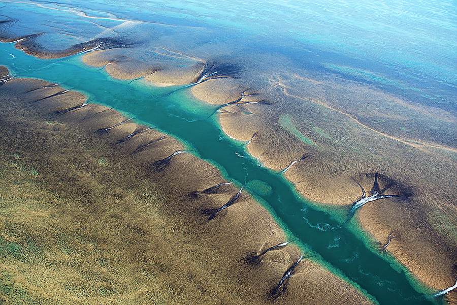 Aerial View Of Montgomery Reef Photograph by Laurenepbath