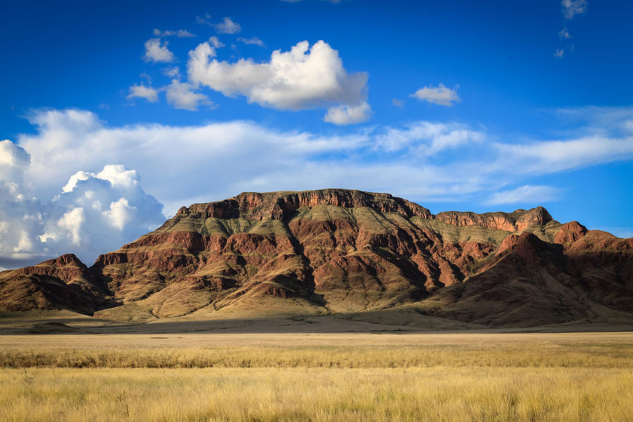 Aferican Grass And Mountain In Sossusvlei Photograph by Gregory Daley  MPSA