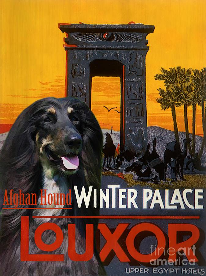 Afghan Hound Art - Luxor Poster Painting by Sandra Sij