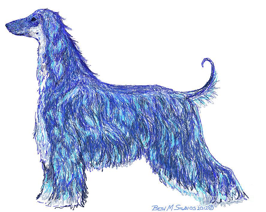 Afghan Hound In Blue Digital Art by Beth M Werner
