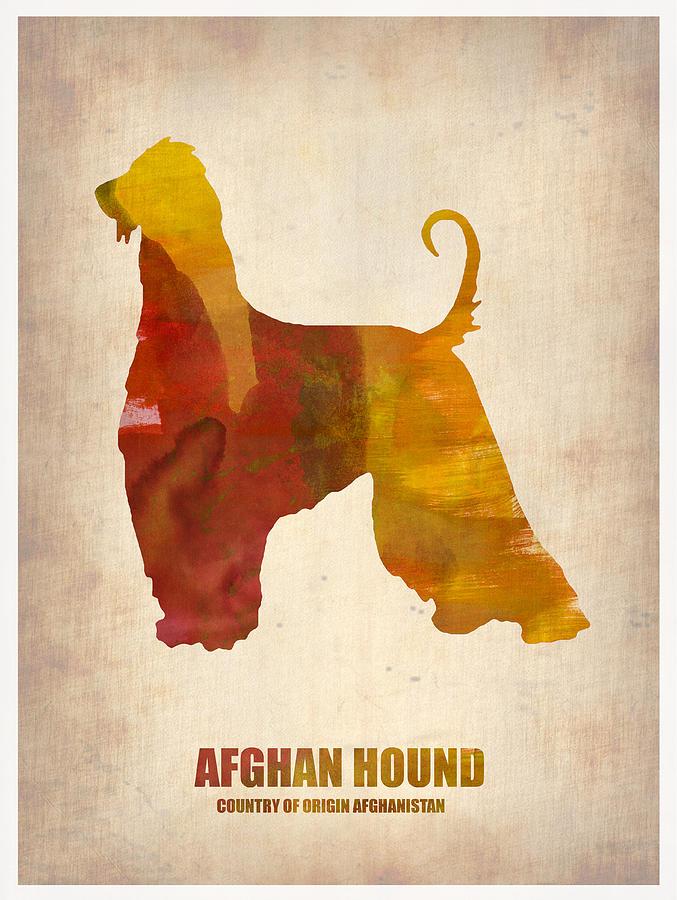 Afghan Hound Painting - Afghan Hound Poster by Naxart Studio