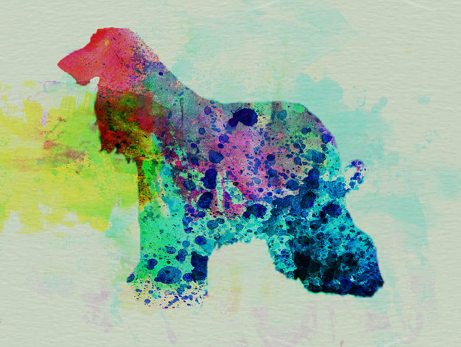 Afghan Hound Painting - Afghan Hound Watercolor by Naxart Studio